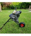 Toro con ruedas cardeno para niños  de 7 a 12 años