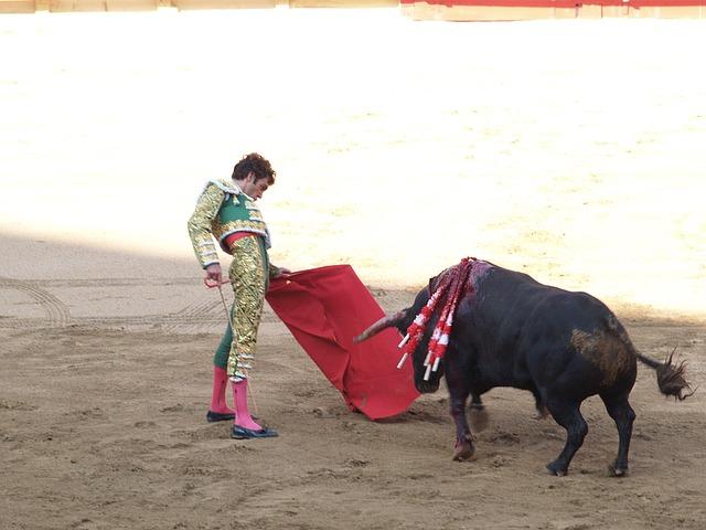 muleta de torero roja